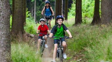 Aktywna majówka - Puszcza Kampinoska na rowerze / fot. Shutterstock