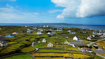 Arany, Irlandia / Shutterstock