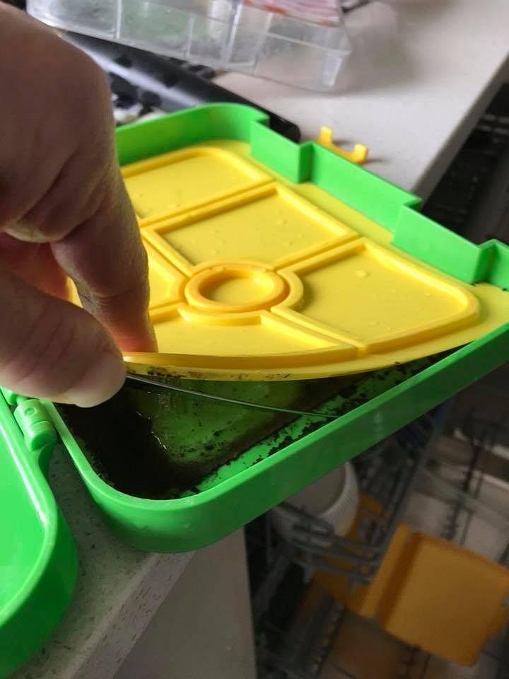 Kobieta otworzyła ukrytą część pudełka na jedzenie. Jej oczom ukazała się pleśń