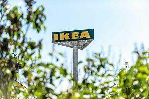 IKEA zapowiada w Polsce sprzedaż mebli przez internet