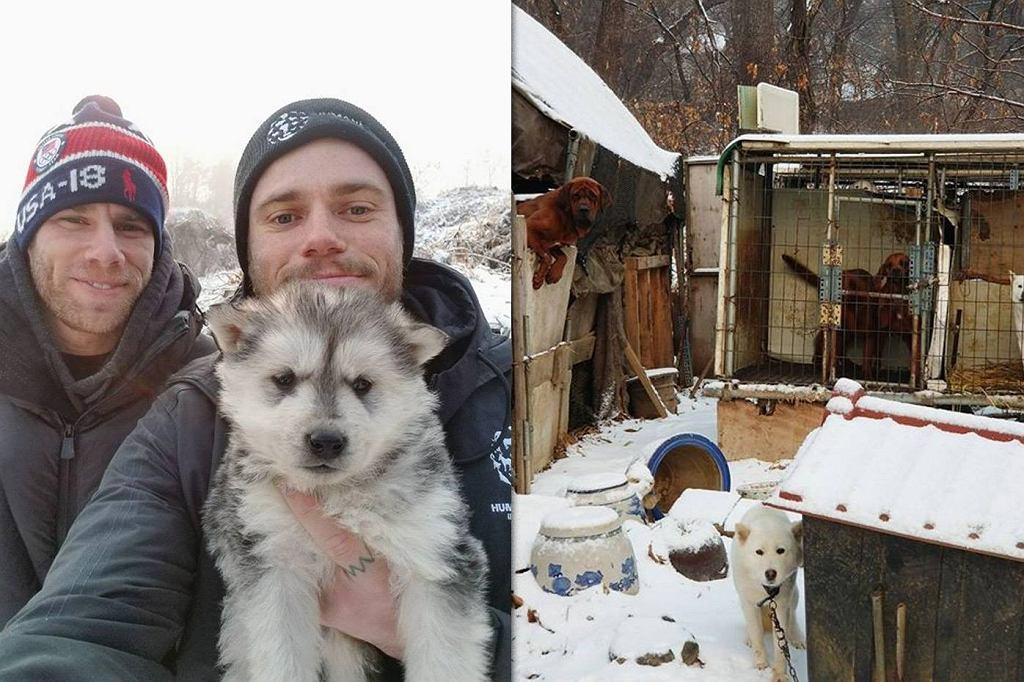 26-latek przyczynił się do zamknięcia psiej fermy i uratowania 90 psów.