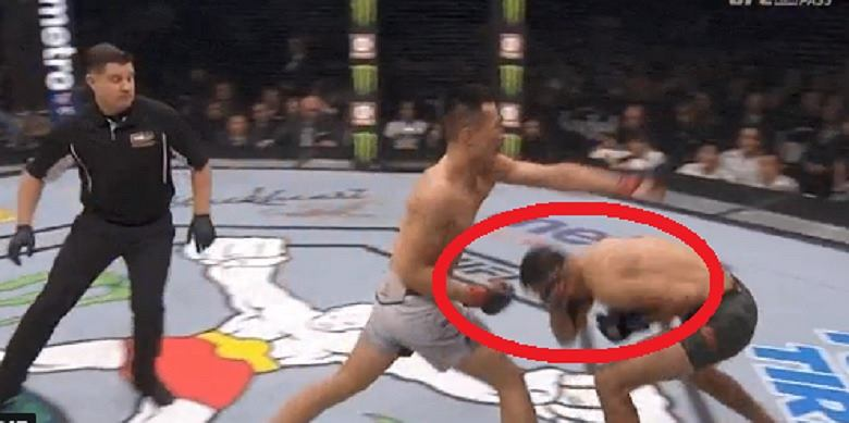 UFC. Nokaut roku