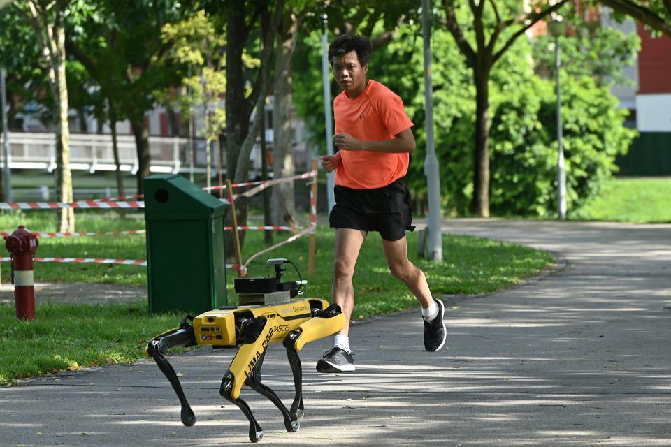 Robot patrolujący park w Singapurze. Przypomina on biegającym i spacerowiczom, żeby zachowali od siebie dystans ze względu na trwającą pandemię koronawirusa