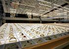 Gdzie wycenić i sprzedać biżuterię za uczciwą cenę? Niekoniecznie w lombardzie
