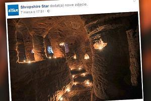 Królicza nora okazała się tajemnym przejściem do ponad 700-letniej jaskini templariuszy [WIDEO]