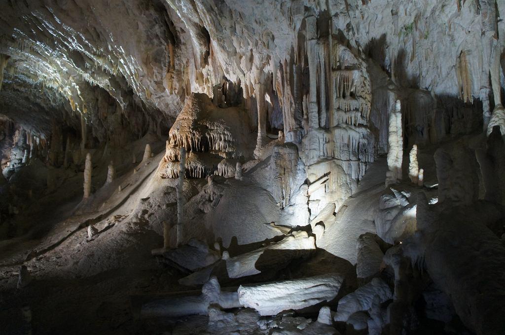 Jaskinie krasowe w Słowenii zachwycają niezwykłymi widokami. Postojna, Słowenia. Zdjęcie ilustracyjne, carolvegan/shutterstock.com