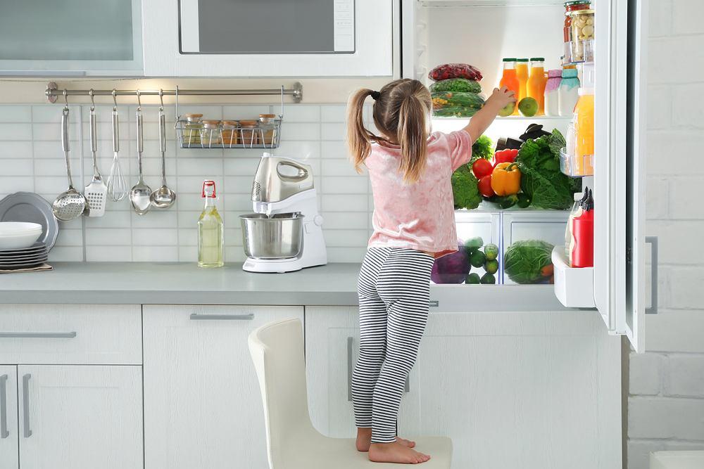 Idealna lodówka do kuchni