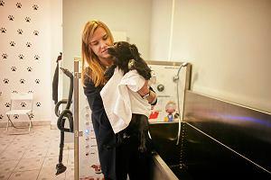 Samoobsługowa myjnia dla zwierząt