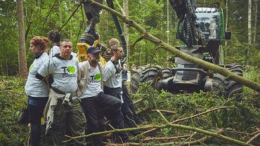 Protest Greenpeace'u przeciwko wycince puszczy.