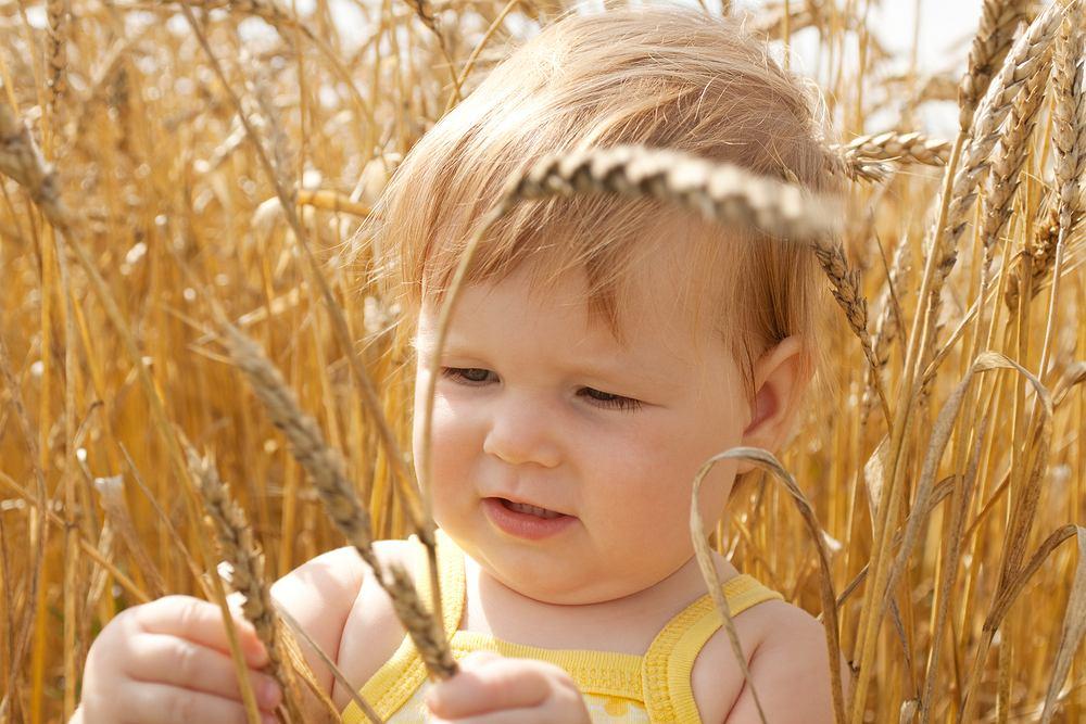 Skarby Zbóż - nowe kaszki dla niemowląt
