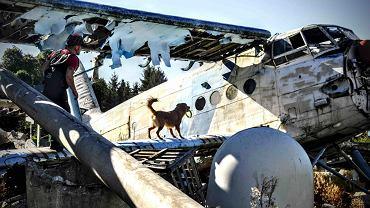 'Przyjaźń Łączy - Wspólnie dla Zwierząt'. Ratownicy zachęcają do wsparcia psów GOPR