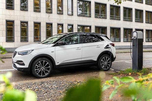 Opel Grandland X Hybrid z polską ceną. Hybrydowy SUV od 162 850 zł