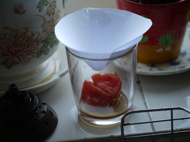 Pułapka na muszki owocówki - owoc w słoiku i lejek z papieru
