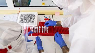 Badanie próbek na obecność SARS - COV - 2