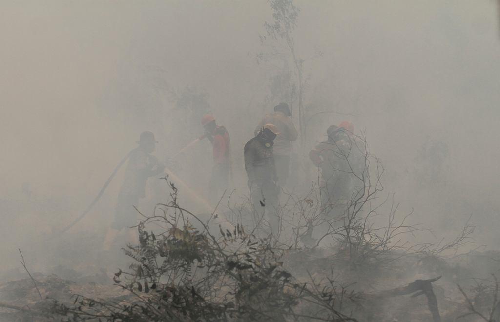Walka z pożarami w Indonezji