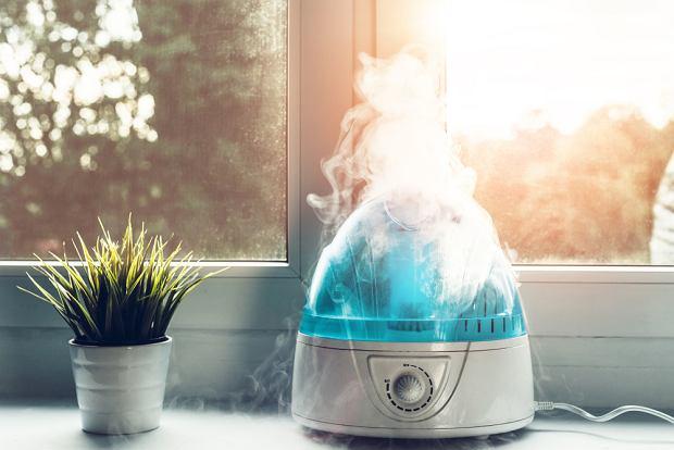 Nawilżacz powietrza - jaki wybrać?