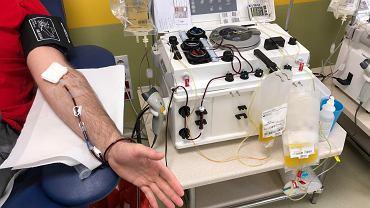 Pobieranie osocza w Regionalnym Centrum Krwiodawstwa i Krwiolecznictwa w Szczecinie