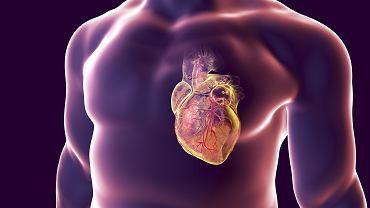 Jakie są objawy zapalenia mięśnia sercowego? Jak przebiega diagnostyka i leczenie?