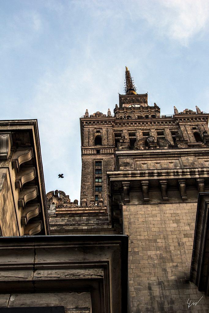Pałac Kultury / fot. Sebastian Czarnecki/ mat. prasowe