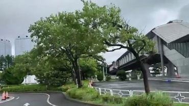 Tajfun nad Tokio