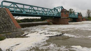 Wysoki poziom wody na Odrze we Wrocławiu