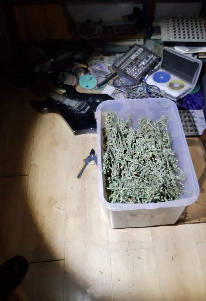 Mieszkaniec Pragi-Południe posiadał w domu ponad 12,5 kg marihuany