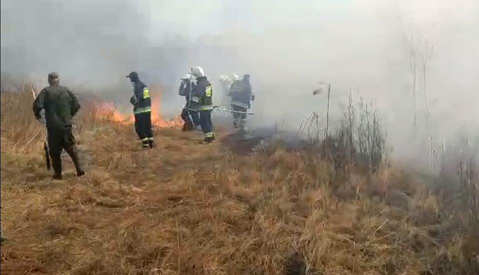 Pożar w Biebrzy