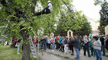Protest przeciw planowanej wycince drzew. Lublin, Aleje Racławickie 29 maja 2019