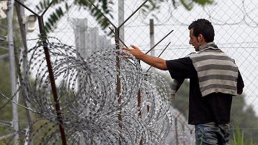 Imigranci z Syrii przy ogrodzeniu zbudowanym na granicy Węgier z Serbią