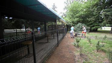 Budowa solidnego ogrodzenia przed nielegalnym wejściem do kawiarni Pod Ptakami w parku Kasprowicza