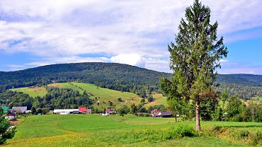 Beskid Niski nazywany jest najdzikszymi górami w Polsce