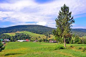 Podkarpackie na wakacje. To tam są najdziksze góry w Polsce, w które turyści wciąż rzadko docierają