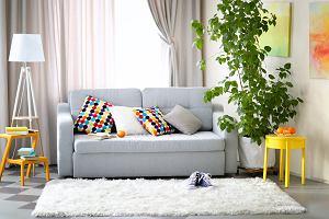 Kanapa z funkcją spania, czyli jak sprytnie wykorzystać małą przestrzeń