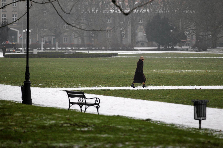 08.12.2013 Szczecin , Jasne Blonia . Pierwszy snieg w Szczecinie . Fot. Cezary Aszkielowicz / Agencja Gazeta