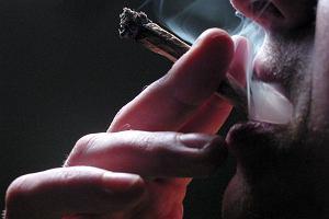 Coraz więcej osób jeździ samochodem pod wpływem narkotyków