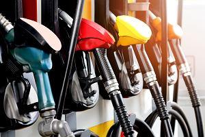 Fit for 55. UE zabije auta z silnikami spalinowymi. Nowe plany klimatyczne