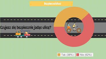 Raport Rowerzyści w Polsce