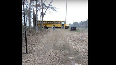 Kogut czeka na nastolatkę na przystanku autobusowym