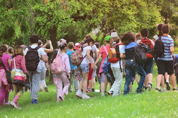 MEN: prawie 435 tys. uczniów weźmie udział w koloniach, obozach i półkoloniach dla dzieci