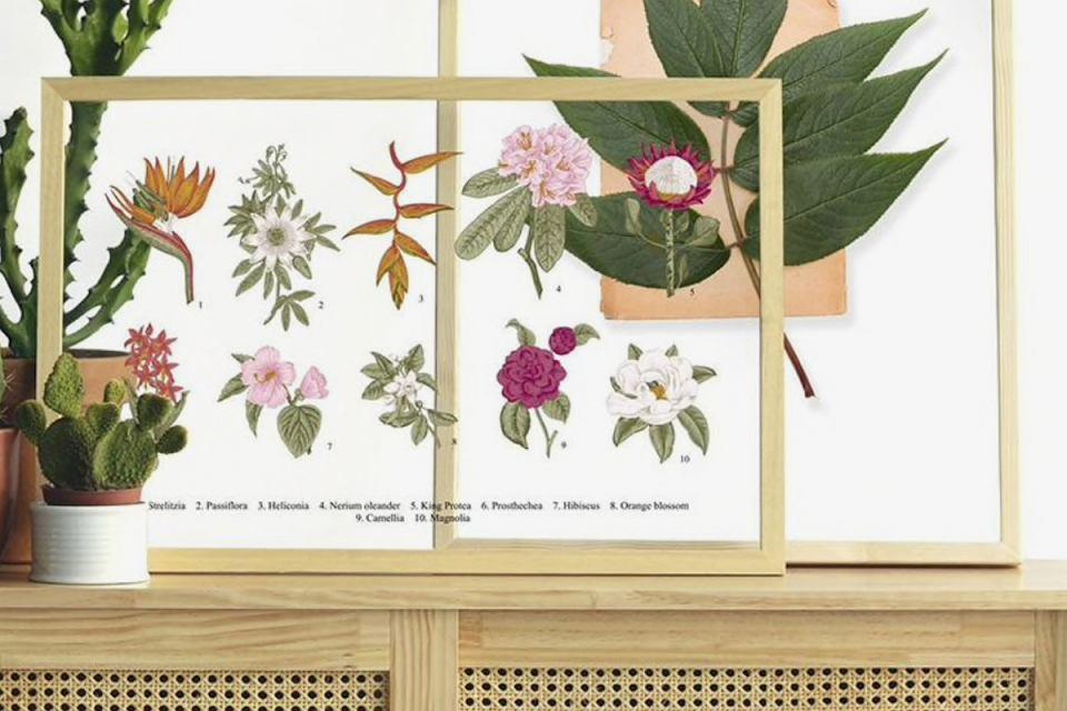 Obrazki z motywami kwiatowymi.