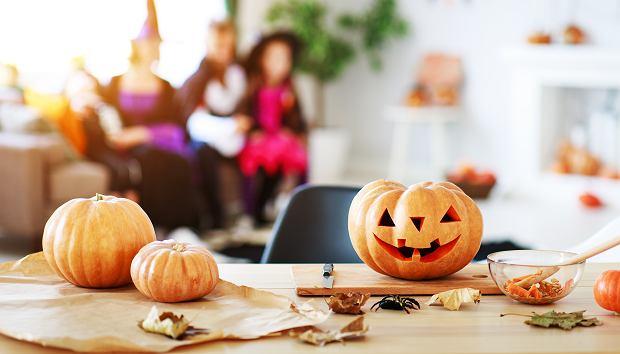 Dynia na Halloween 2020. Co wyciąć z dyni na Halloween? Szablony i pomysły