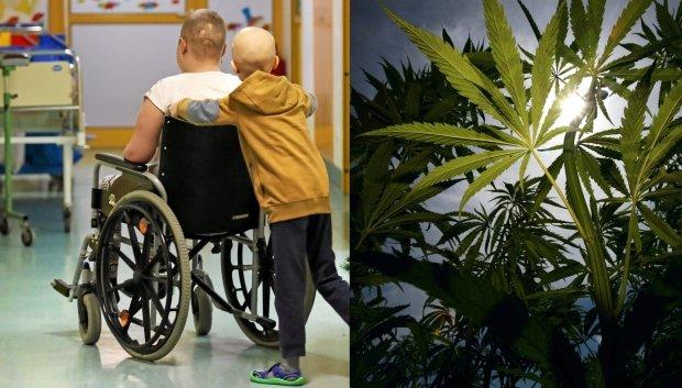 Marihuana medyczna wg chorych i ich bliskich pomaga w walce z bólem, zwłaszcza w zaawansowanych stadiach choroby