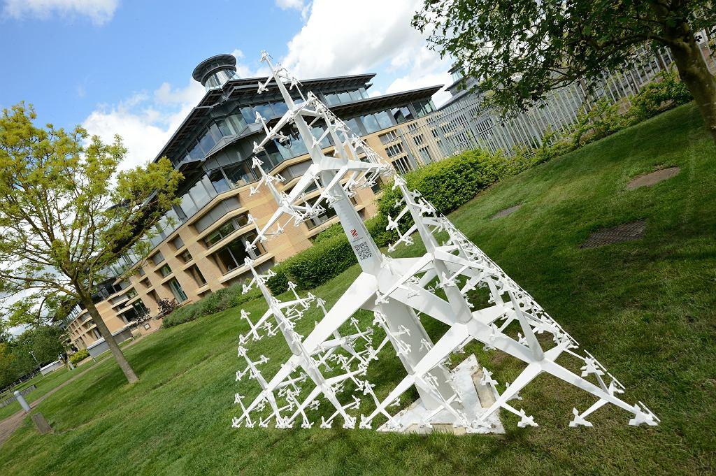 Drzewo Sierpińskiego - na trawniku w  Uniwersytecie Cambridge