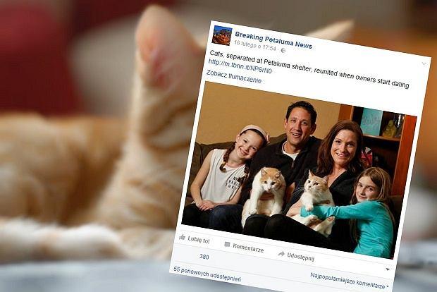 Cathleen i Brian to bratnie dusze, podobnie, jak ich adoptowane koty