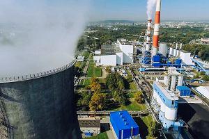 Nadchodząca dekada będzie triumfem ekorozwiązań, zdrowej produkcji ciepła i prądu, uczeniem się od natury