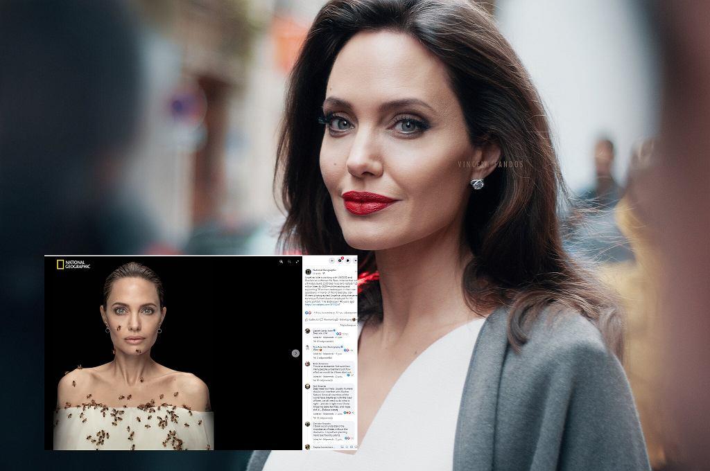 Angelina Jolie dla 'National Geographic'