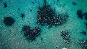 Park Gródek przypomina Malediwy