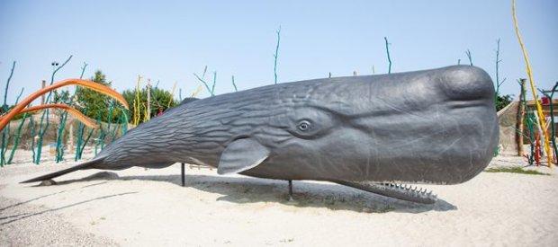 Modele Park Wieloryba fot. Robert Dajczak