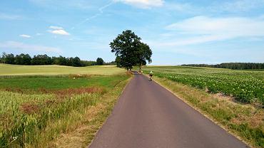 Krajobrazy na całej trasie są zachwycające. Nawierzchnia głównie asfaltowa