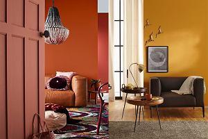 Barwy ciepłe i zimne - które lepsze we wnętrzach?